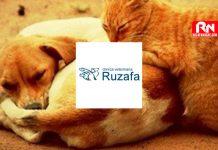 clinica-veterinaria-ruzafa-valencia